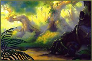 Der Wald Neldoreth