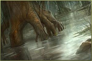 Der Wald Sarius